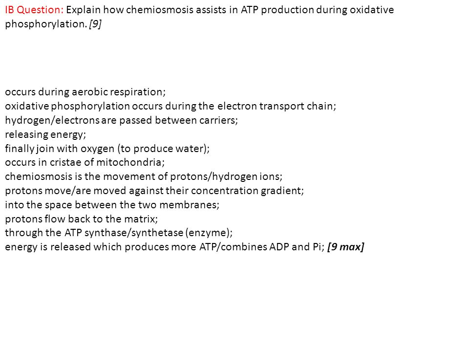 IB Question: Explain how chemiosmosis assists in ATP production during oxidative phosphorylation. [9]